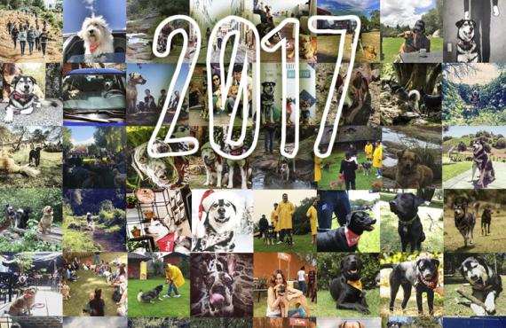 El 2017 para Tótems