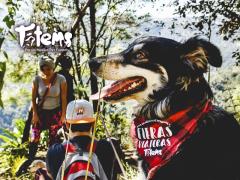 Viaje Tótems Campamento Tlatempa  Zacatlán de las Manzanas