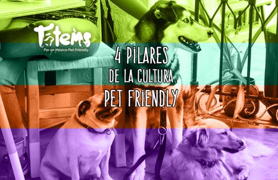 Los 4 de la Cultura Pet Friendly