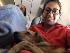 Mi viaje en avión con Luka